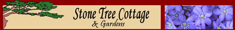 Comox Valley Cottage Accommodations: Stone Tree Cottage & Gardens - Courtenay, BC